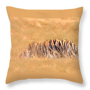 Throw Pillow featuring the photograph Katniss by Annette Hugen