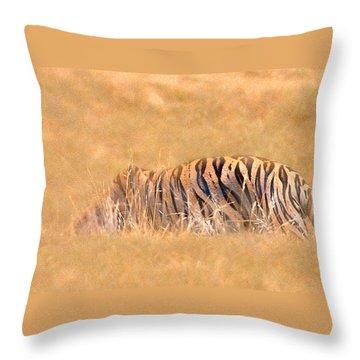 Katniss Throw Pillow by Annette Hugen