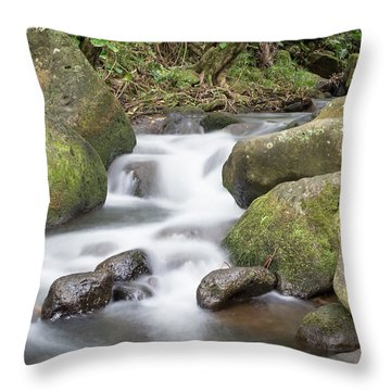 Kauai Flow Throw Pillow