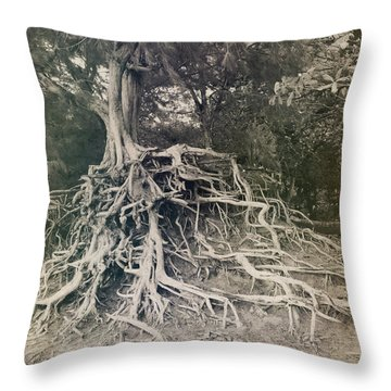 Kauai Throw Pillow