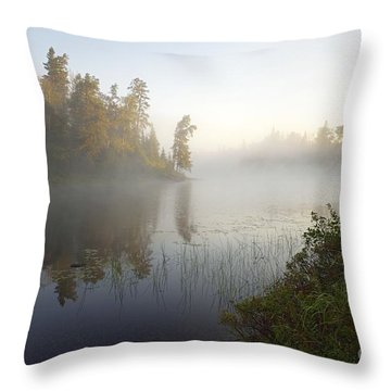 Throw Pillow featuring the photograph Kawishiwi Morning Fog by Larry Ricker
