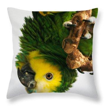 KC Throw Pillow
