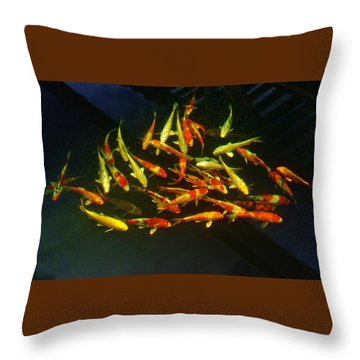 Kcsd Koi 6 2016 Throw Pillow