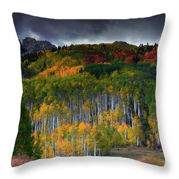 Kebler's Coat Of Many Colors Throw Pillow