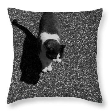 Keeky Throw Pillow