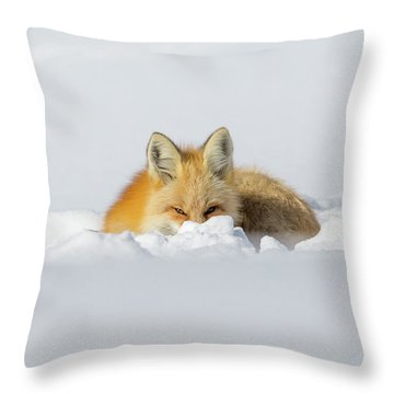 Snow Hide Throw Pillow