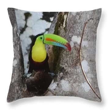 Keel-billed Toucan #2 Throw Pillow