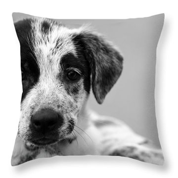 Keep Me Throw Pillow by Amanda Barcon