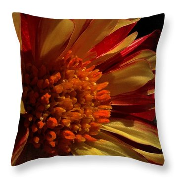 Keep Me Guessing Throw Pillow