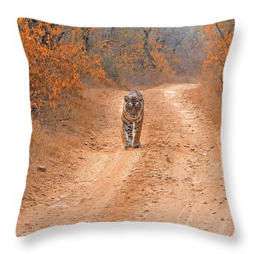 Keep Walking Throw Pillow