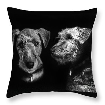 Throw Pillow featuring the drawing Keeper The Welsh Terrier by Peter Piatt