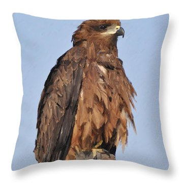 Keeping An Eye On The Enemy Throw Pillow