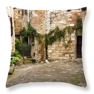 Keeping Montefioralle Clean Throw Pillow by Rae Tucker
