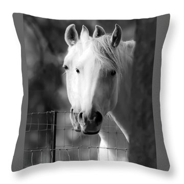 Throw Pillow featuring the photograph Keeping Their Eyes On Us D3126 by Wes and Dotty Weber