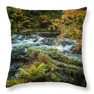 Kejimkujik National Park Throw Pillow