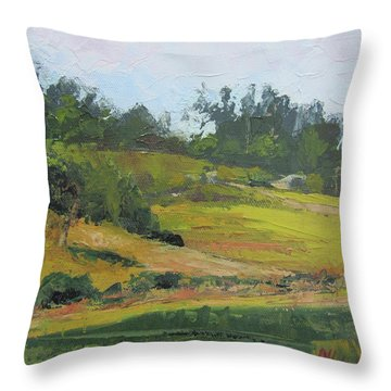 Throw Pillow featuring the painting Kenilworth Hills Queensland Australia by Chris Hobel