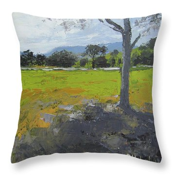 Throw Pillow featuring the painting Kenilworth Landscape Queensland Australia by Chris Hobel