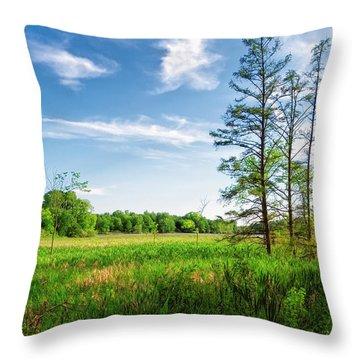 Throw Pillow featuring the photograph Kensington Marsh by Lars Lentz