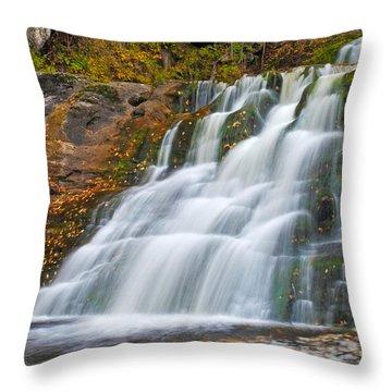 Kent Falls Throw Pillow by David Freuthal