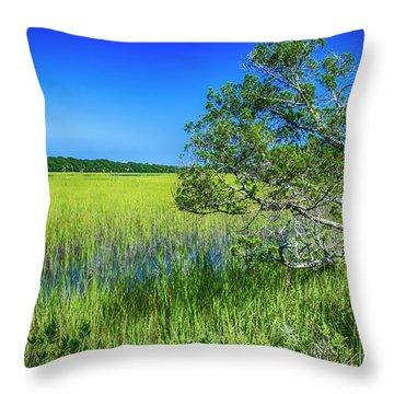 Kent Mitchell Nature Trail, Bald Head Island Throw Pillow