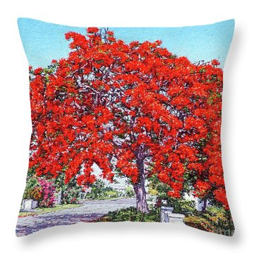 Kent Street - Nassau East Throw Pillow
