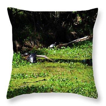 Kenta Canal Turtles Jean Lafitte Park Louisiana Throw Pillow