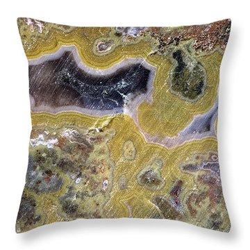 Kentucky Agate Throw Pillow