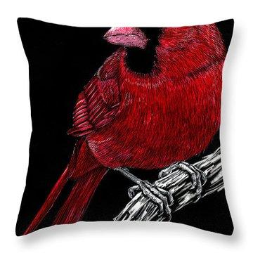 Kentucky Cardinal Throw Pillow