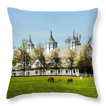 Revised Kentucky Horse Barn Hotel 2 Throw Pillow by Randall Branham