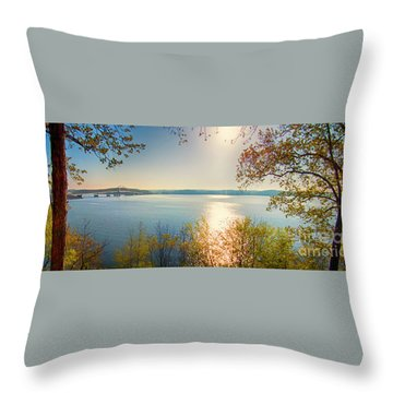 Throw Pillow featuring the photograph Kentucky Lake by Ricky L Jones