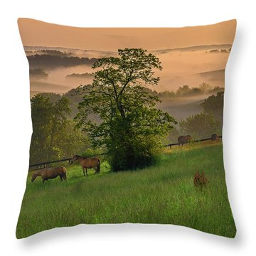Kentucky Morning Throw Pillow