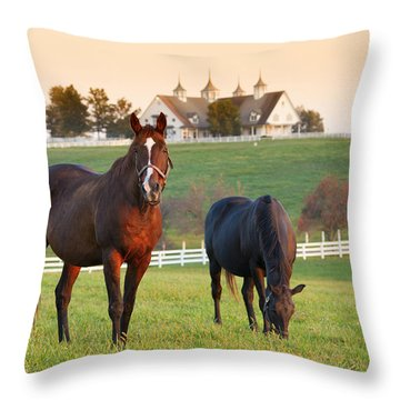 Kentucky Pride Throw Pillow by Alexey Stiop