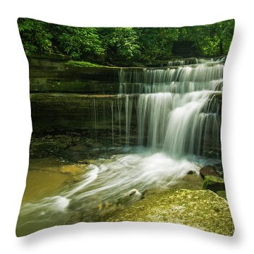 Kentucky Waterfalls Throw Pillow by Ulrich Burkhalter