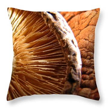 Kept In A Cool Dark Place Throw Pillow