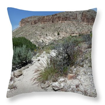 Kershaw-ryan State Park Throw Pillow