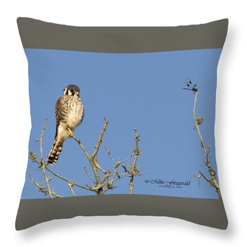 Kestrel And Lunch Throw Pillow