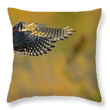 Kestrel Takes Flight Throw Pillow