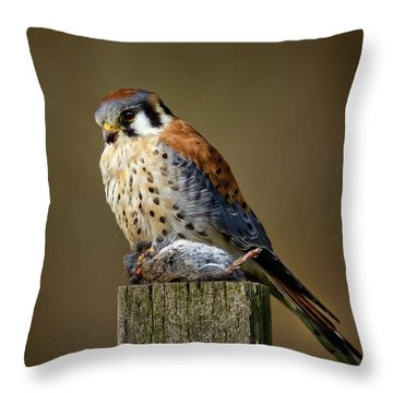 Kestrel With Prey Throw Pillow