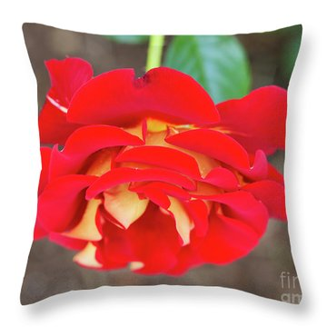 Ketchup And Mustard Rose Throw Pillow by Louise Heusinkveld