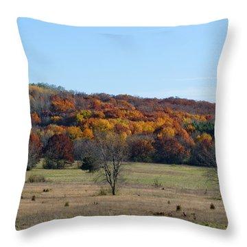 Kettle Morraine In Autumn Throw Pillow