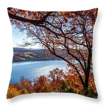 Throw Pillow featuring the photograph Keuka Lake Vista by William Norton