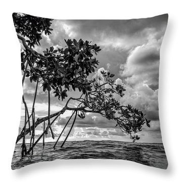 Key Largo Mangroves Throw Pillow