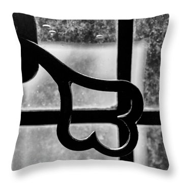 Throw Pillow featuring the photograph Key To The World by Christi Kraft