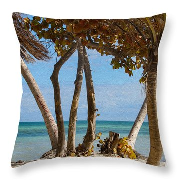 Key West Afternoon Throw Pillow