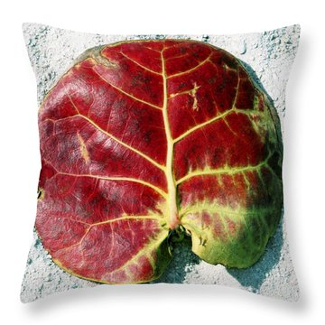 Key West Leaf In The Sand Throw Pillow
