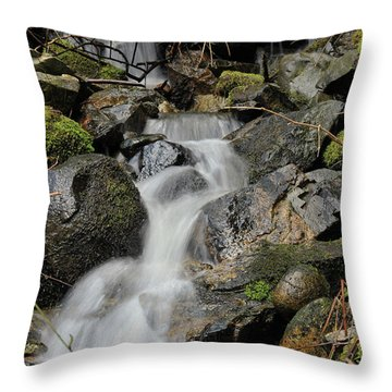 Throw Pillow featuring the photograph Keystone by Rod Wiens