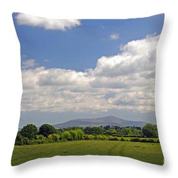 County Kilkenny Throw Pillow