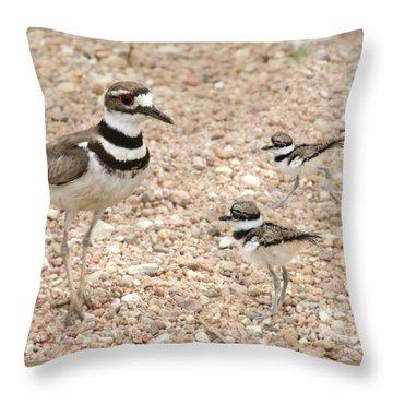 Killdeer And Chicks Throw Pillow