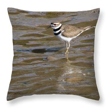 Killdeer Hunting Throw Pillow