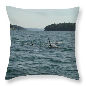 Killer Whales Throw Pillow